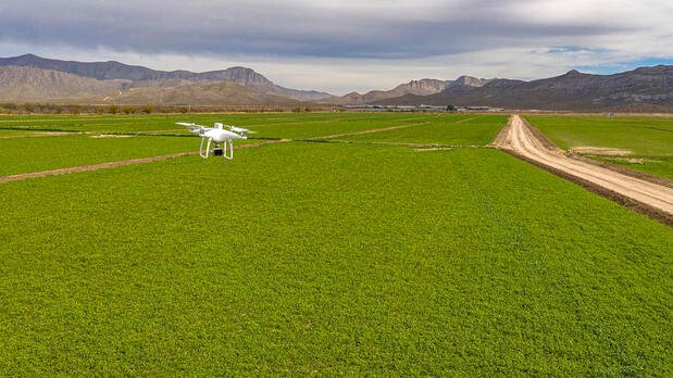 HEA_BLO_AGR_Drone-mapping-for-analyzing-animal-feed-crops